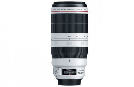 Canon EF 100-400mm F4,5-5,6 L IS II USM