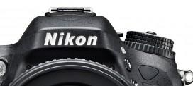 Digitale Fotografie mit der Nikon DSLR und Systemkamera