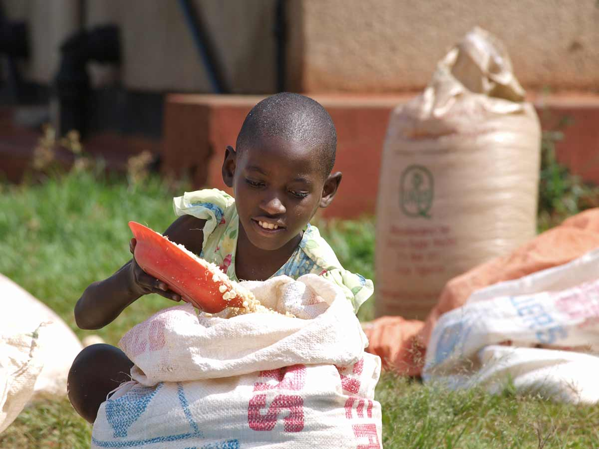 """""""Mais wird zum Trocknen tagsüber in der Sonne ausgelegt. Alle Kinder helfen und sammeln es abends wieder ein, damit die Tiere es in der Nacht nicht wegholen."""" – Mandy Knuth"""