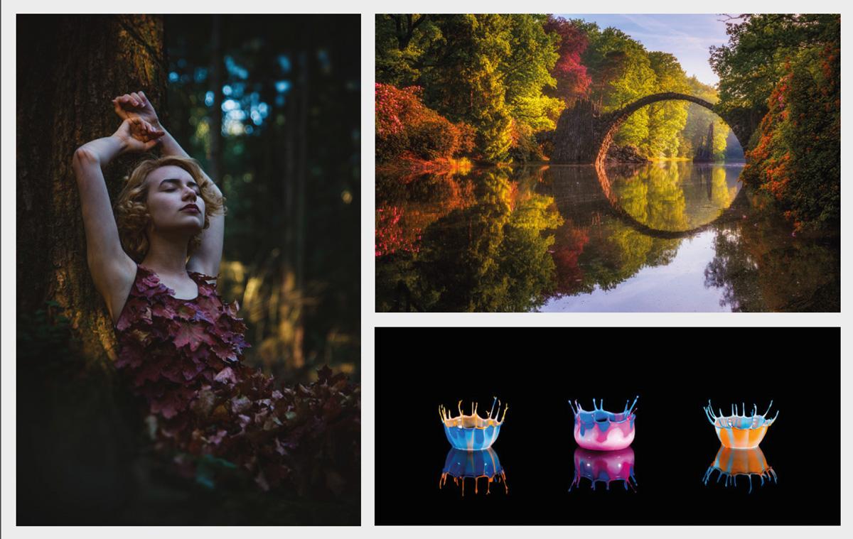 Gewinnerbilder_Fotowettbewerb