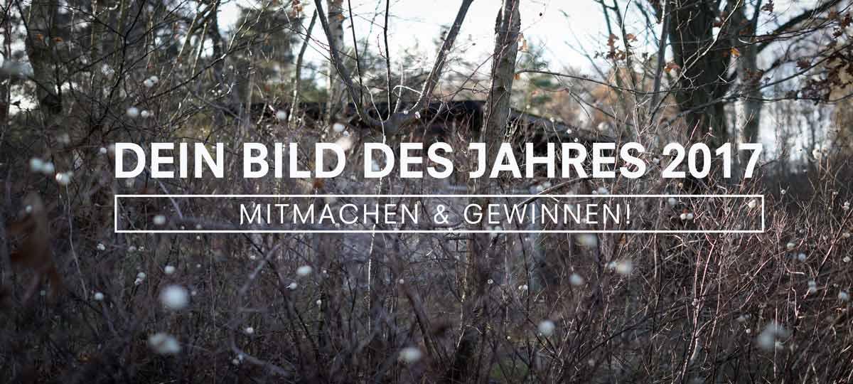 DEIN BILD DES JAHRES 2017