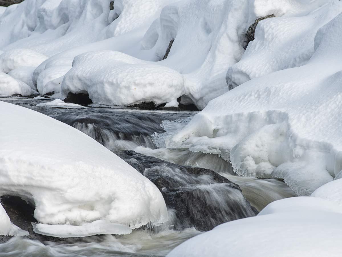 Lappland-Schneeschlze