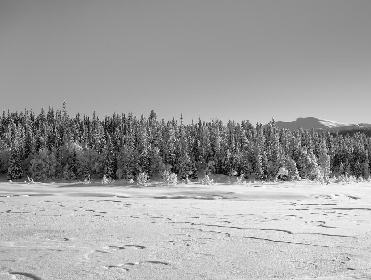 Lappland-Winter-5