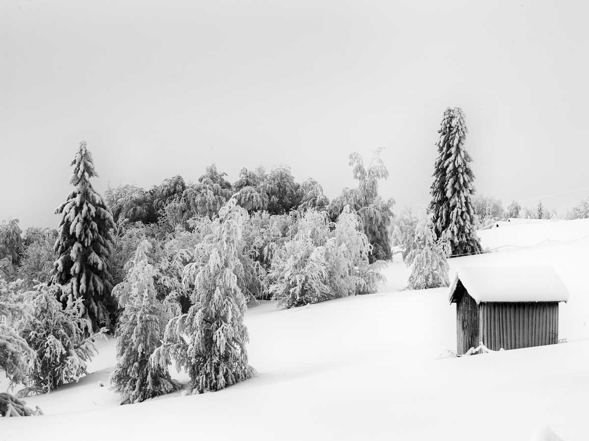 Lappland-schlechtes-Wetter
