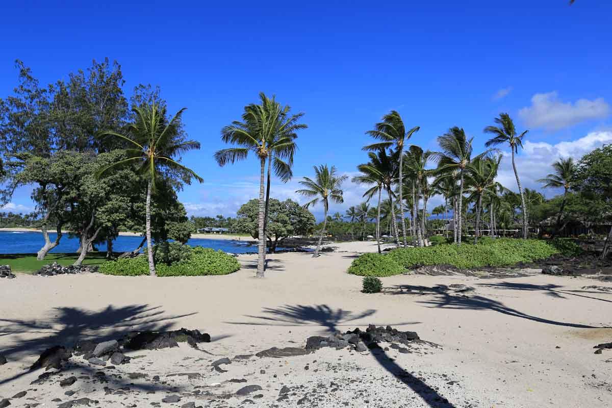 Traumstrand-auf-Big-Island